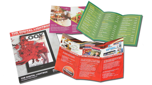 DDL Flyers folded to DL (4pp DL Brochure)